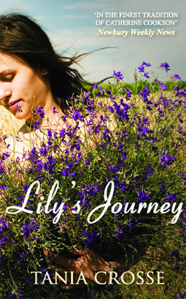 Lily's Journey Book Cover Paperback